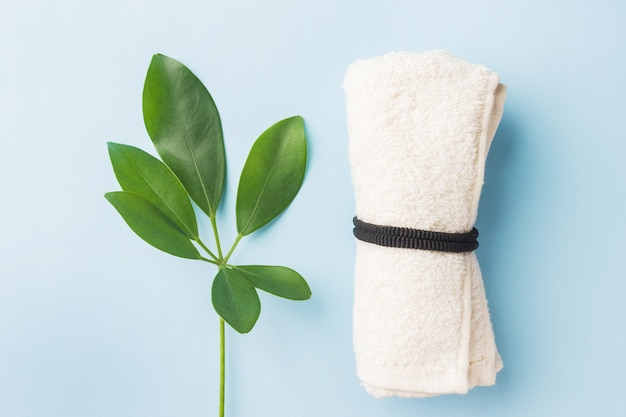 Spa concept of green leaf and towel on blue background.