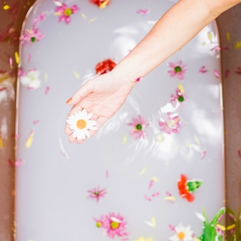 Spa concept with flowers in bathtub