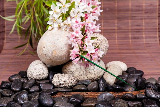 Spa concept with zen stones on water, flowers and bamboo