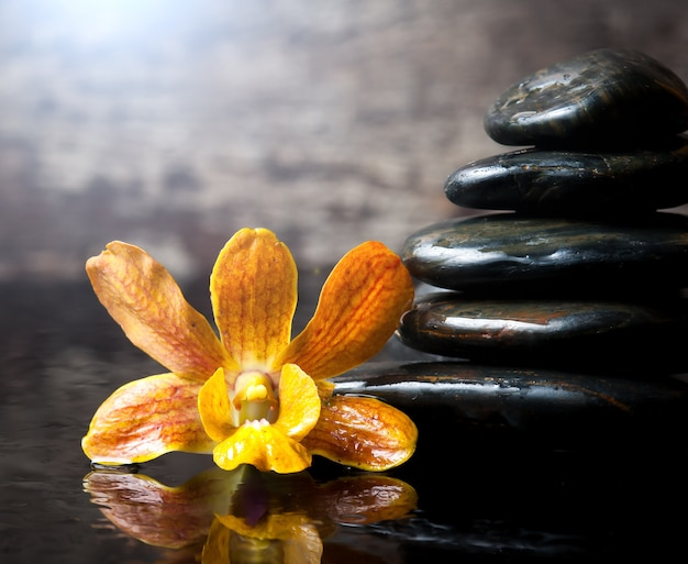 Spa concept zen stones and orchid on wood background