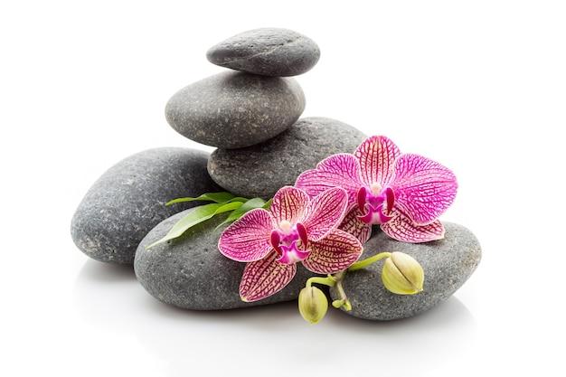 Камни и орхидея для массажа спа, изолированные на белом фоне.