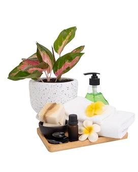 클리핑 패스가 있는 흰색 배경에 분리된 비누오일알로베라 로션블랙 스톤플루메라이 플라워타올과 아글라오네마 냄비가 있는 스파 제품