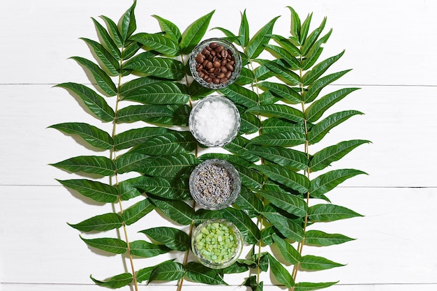 Spa still life with different ingredients for body scrub and green leaves on a white wooden surface