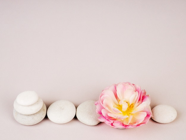 Spa still life with zen stones and flower