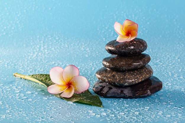 Spa stone pile with flowers and water drops on a blue wall
