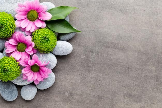 스파 돌과 회색 배경에 꽃입니다.