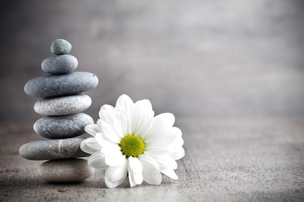 Spa stones treatment scene, zen like concepts