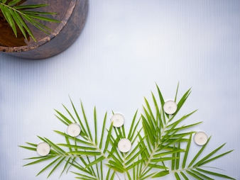 Spa theme with bamboo and wooden blow