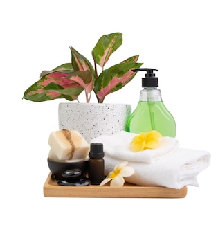 Spa wellness with soapoilalovera lotionblack stonesplumerai flower towel and  aglaonema pot isolated on  white background with clipping pat