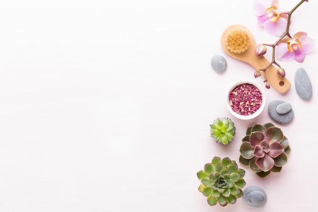 Спа с биокосметикой ручной работы и композицией кактусов, плоская планировка, место для текста - изображение.