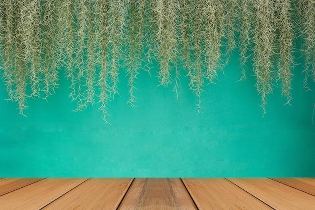 녹색 벽 배경으로 스페인어 이끼.