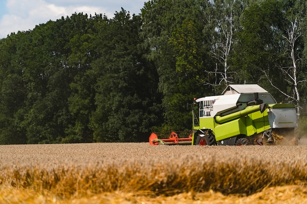 밭에서 작물을 수확하는 특수 기계.