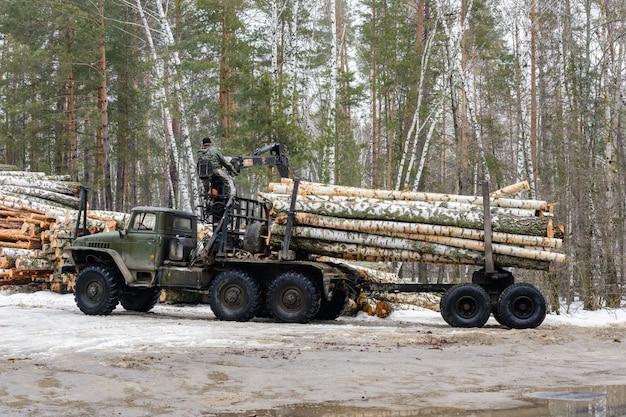목재 운반용 특수 차량. 자작나무 통나무를 특수 차량에 싣고 있습니다. 목재산업.
