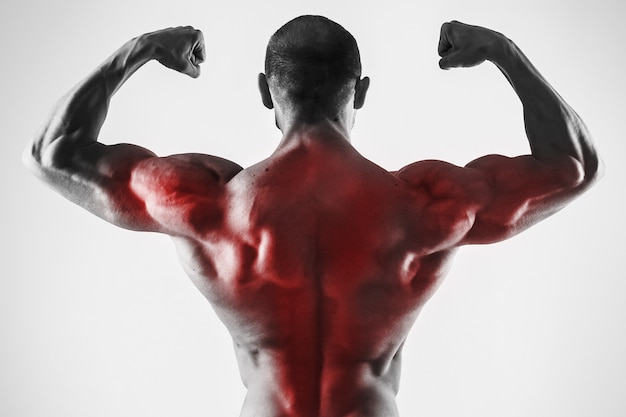 Specialization for back muscles in a bodybuilidng. muscular man showing his strong body.