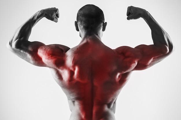 Bodybuilidng의 등 근육 전문화. 그의 강한 몸매를 보여주는 근육 질의 남자.