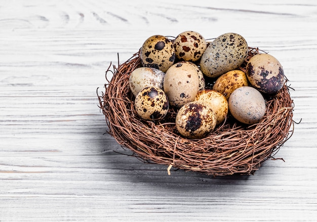 Speckled quail eggs in a nest made of twigs over the light wooden background.