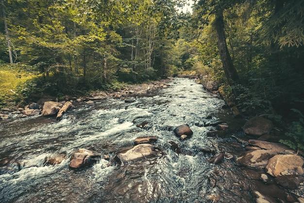 푸른 계곡을 따라 흐르는 산강이 장관을 이룹니다. 야생의 손길이 닿지 않은 자연의 평온함과 강인함. carpathians 산맥, 우크라이나입니다.