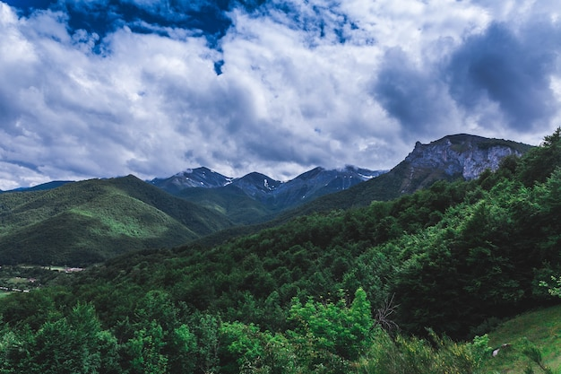 산과 숲 위로 흐린 하늘의 장엄한 전망