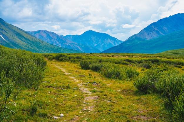 Захватывающий вид на далекие гигантские горы