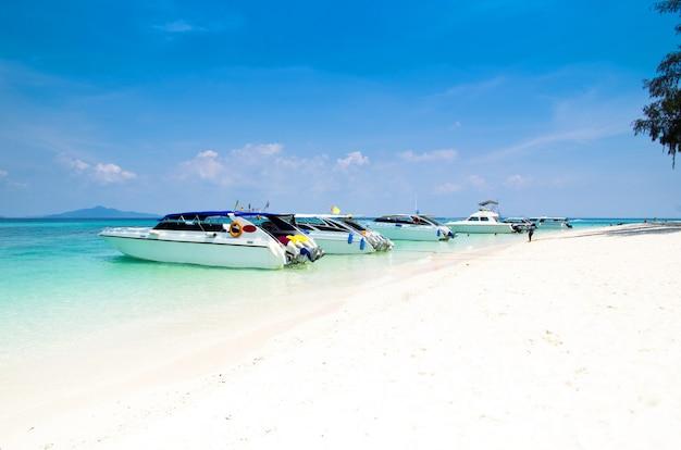 熱帯の海でスピードボート