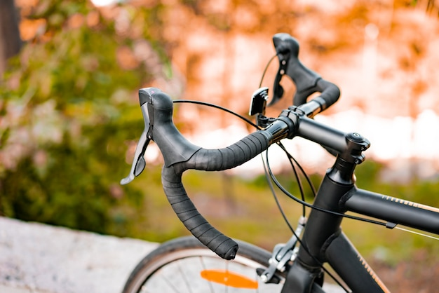 Speed shifter and brakes of road bike