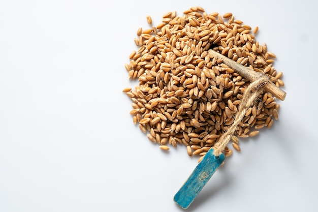 Spelled wheat cereal