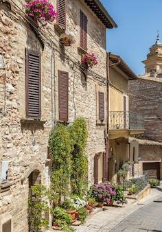 Spello, italy - circa june 2021: flowers in ancient street. spello is located in umbria region, italy.