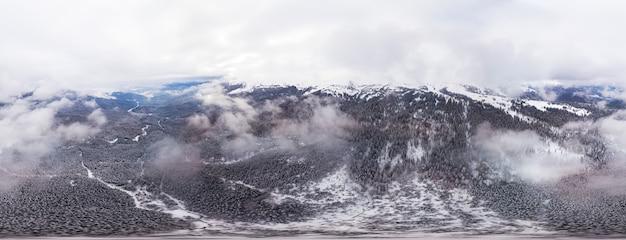 トウヒの木の球形の空中雪に覆われたパノラマ