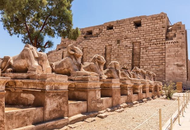 Аллея сфинксов в комплексе карнакского храма, луксор, египет.
