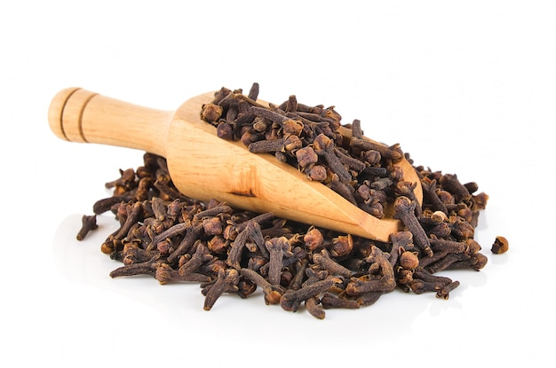 Spice cloves isolated