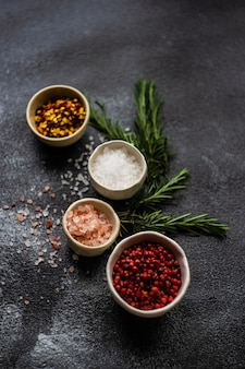 海の塩でスパイス料理のコンセプト