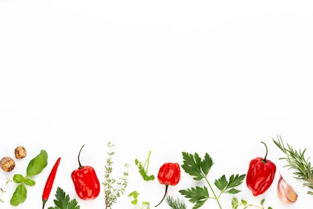 白い背景の上のスパイスハーブの葉と唐辛子