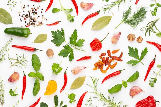 Травяные листья специй и перец чили на белом. образец овощей. цветочные и овощи на белом. вид сверху, плоская планировка.