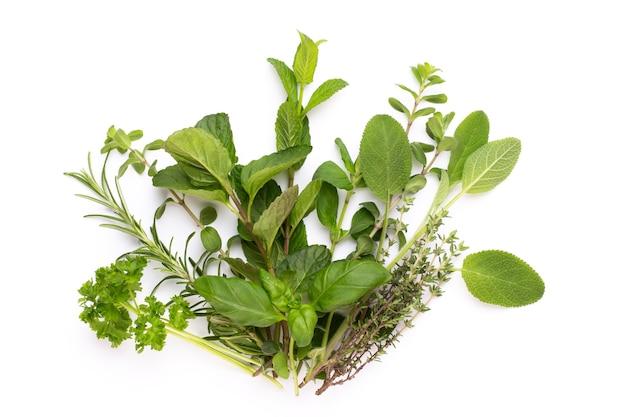 白い表面に分離されたスパイス植物。上面図。