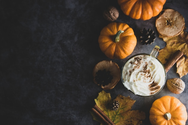 Spiced autumn pumpkin latte drink with cinnamon and cream foam