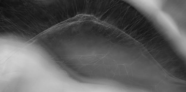 거미줄, 추상적 인 배경