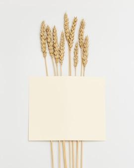 Колосья пшеницы заделывают пространство для копирования бумаги