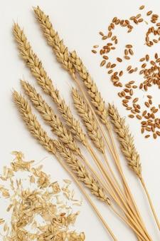 Колосья пшеницы, семян, соломы заделывают. зерновые культуры. творческая концепция богатого урожая. натюрморт с естественными колосьями растений. вид сверху
