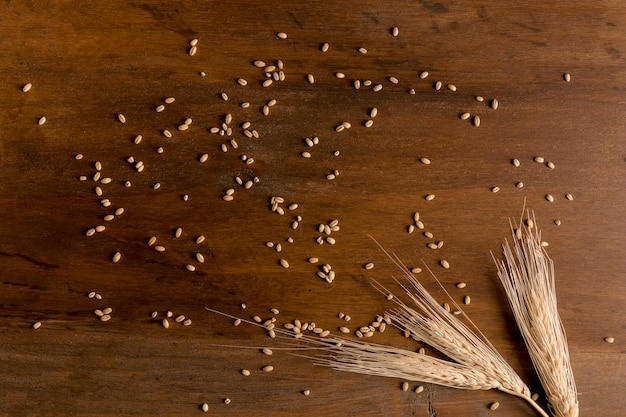 Spike and wheat granules scattered on wooden table