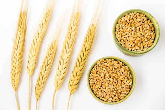 Spikelets of barley. top view