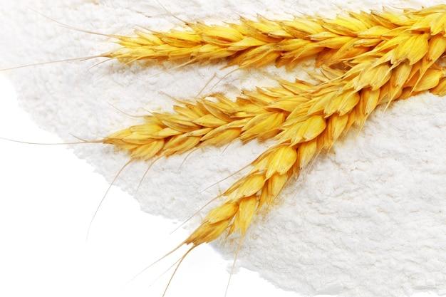 밀가루 유출에 밀의 이삭입니다.격리.
