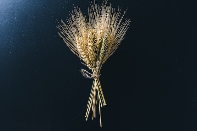 Spikelets of wheat on black wooden