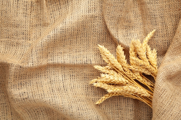 Spikelets of wheat on sackcloth with copy space