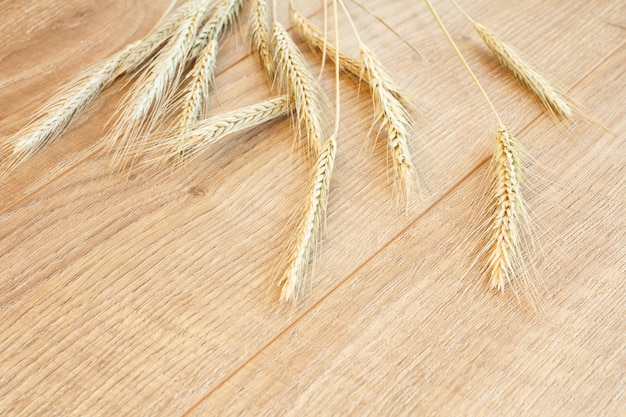Spikelets of wheat on wooden boards. top view.