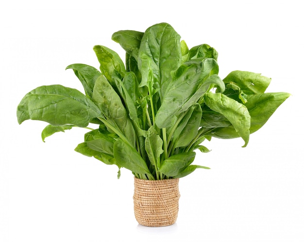 Spinach in the basket on white wall