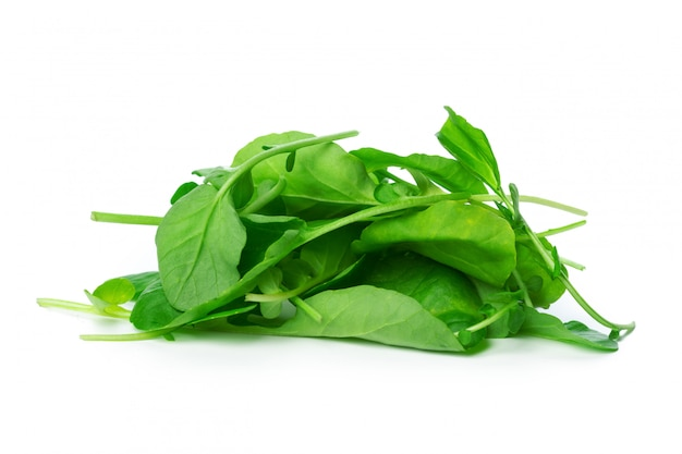 Spinach isolated on white background