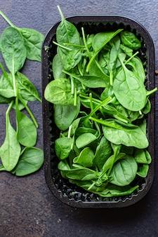 시금치 샐러드 녹색 육즙 잎 유기농 샐러드 서빙 크기