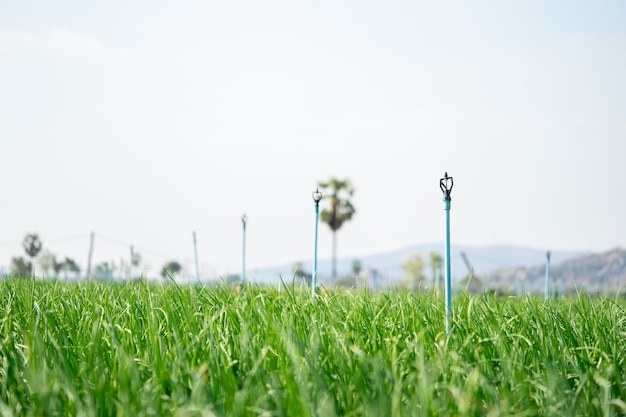 Spinger farmers' water systems help water to spread well and save watering time for farmers.
