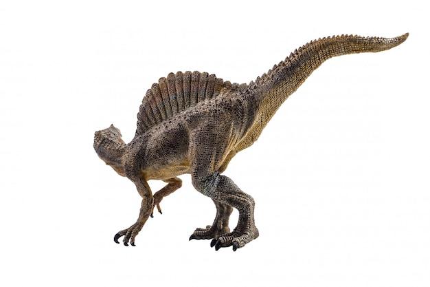 Spinosaurus, dinosaur on white background