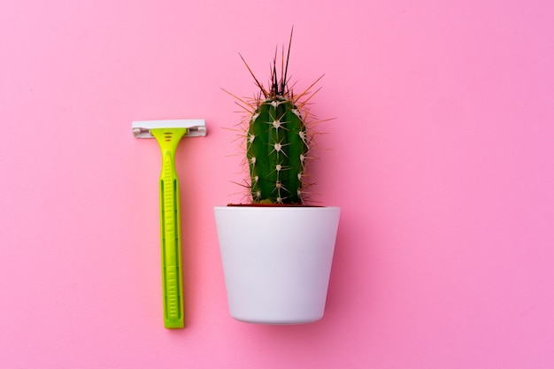 Spiny cactus and disposable shaver on pink background